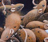 Bath Rats 2